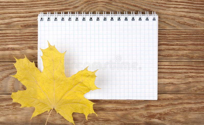 Dried yellow maple leaf on a wooden background royalty free stock photo