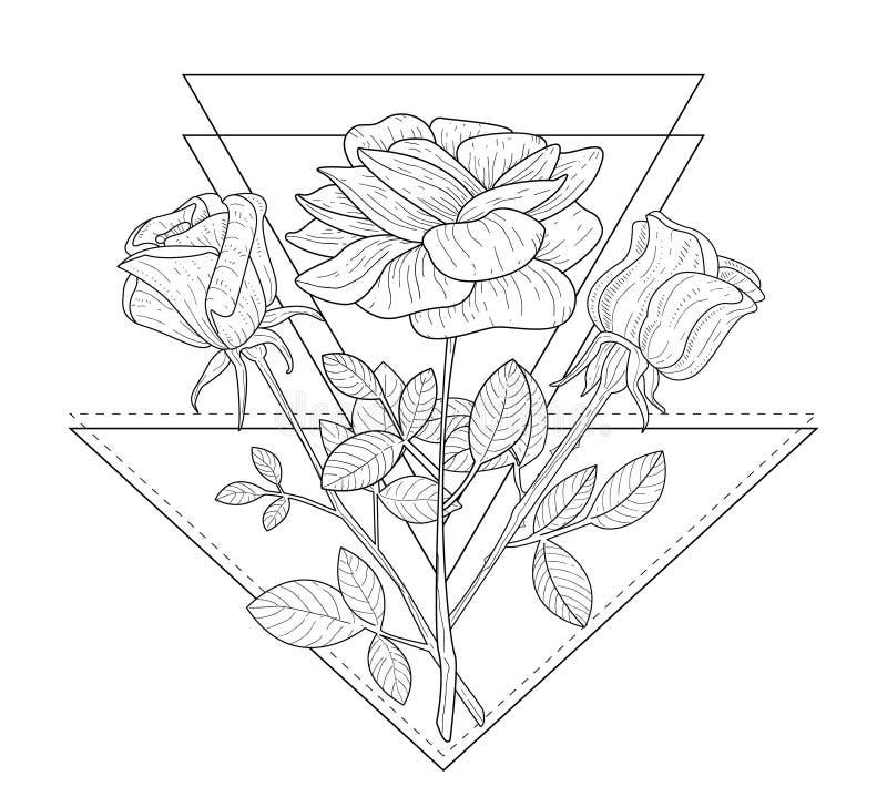 Driehoek met de Vectorillustratie van Rose Flowers Hand Drawn Monochrome vector illustratie