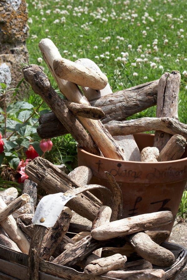 Download Drift wood stock photo. Image of nobody, flowers, basket - 26761078