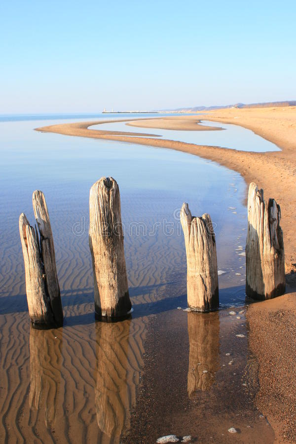 driftwood λίμνη Μίτσιγκαν saugatuck στοκ εικόνες