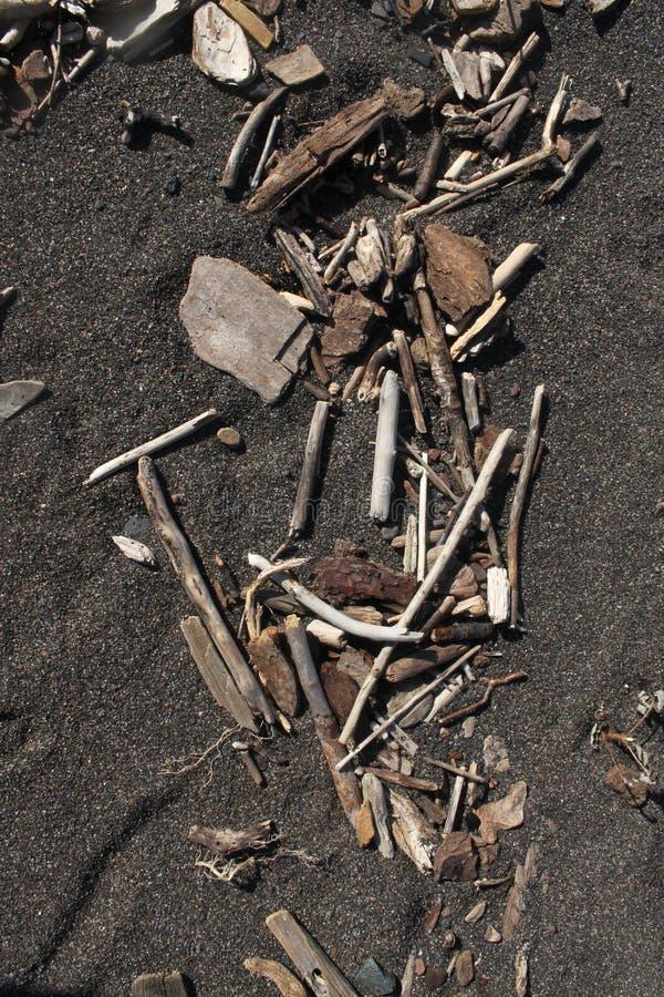 Driftwood στην άμμο στοκ φωτογραφίες με δικαίωμα ελεύθερης χρήσης