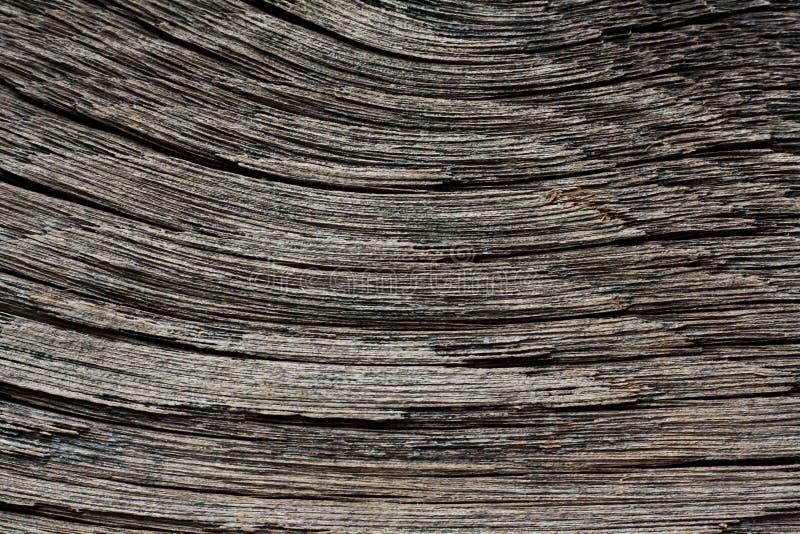 driftwood stock foto's