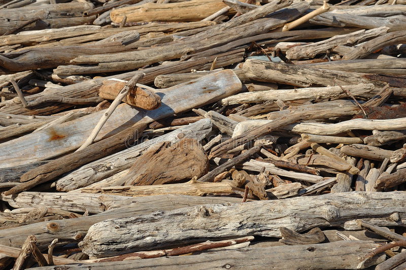 Driftwood. A pile of driftwood at a beach in South Africa stock photos