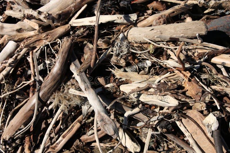 Download Driftwood stock photo. Image of debris, texture, wooden - 9766852