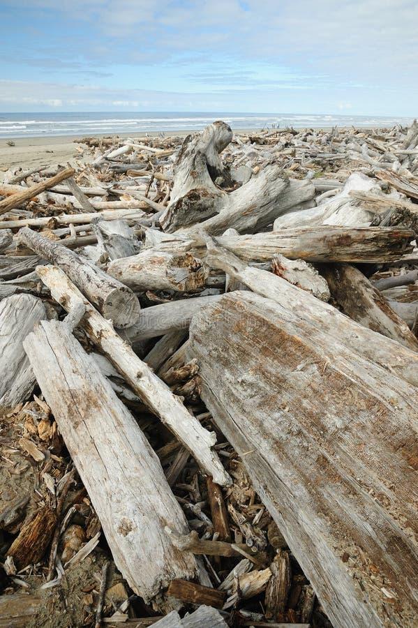 Driftwood on beach stock image