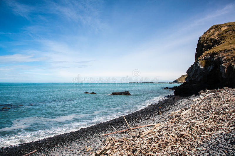 Download Driftwood beach stock photo. Image of island, isolated - 40043832