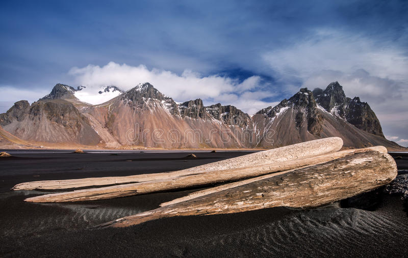 Download Driftwood stock photo. Image of landscape, gray, fjord - 45394808