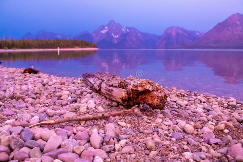 Driftwood in  Grand Teton National Park stock photography