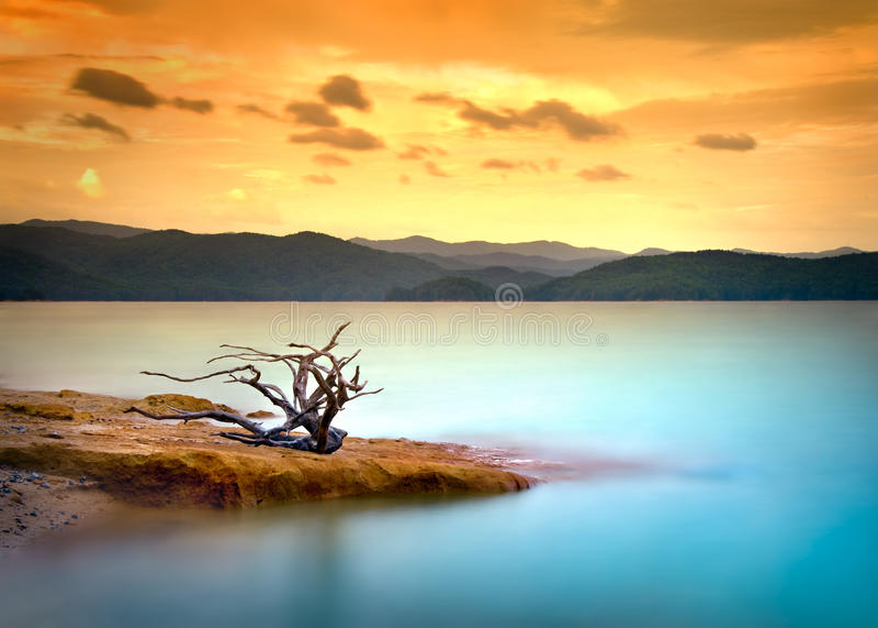 driftwood jeziorna halna nieba zmierzchu woda fotografia royalty free