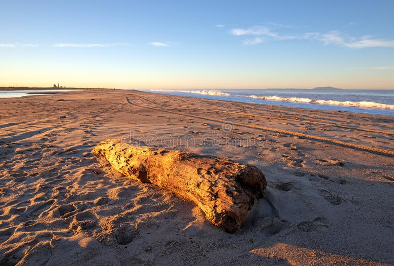 Driftwood log on McGrath State Park beach in the sunrise light at Ventura California USA royalty free stock photos