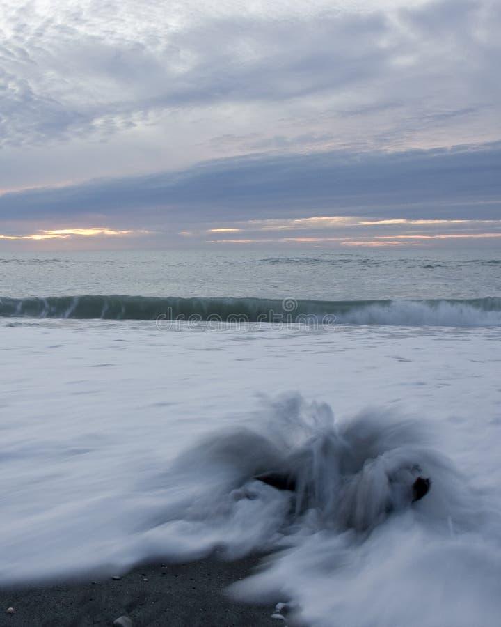 Driftwood, ondas y puesta del sol fotos de archivo