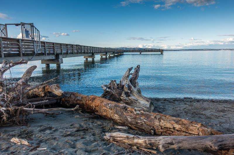Driftwood And Pier. A view of a pile of driftwood and the pier at Dash Point, Washington royalty free stock images