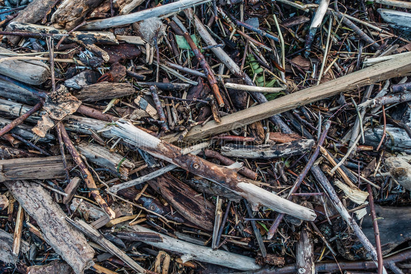 Driftwood Pile Macro royalty free stock photos