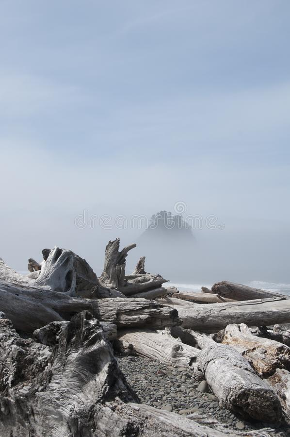 Misty Mountain Island with Driftwood at Rialto Beach. Olympic National Park, WA. Driftwood on the seashore at Rialto Beach with misty mountain islands. Olympic royalty free stock photos