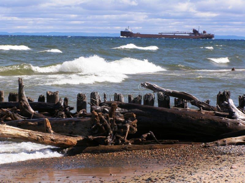Driftwood sul superiore di lago fotografia stock libera da diritti
