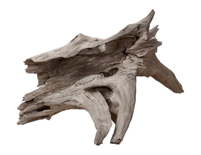 Driftwood velho isolado no branco imagem de stock royalty free