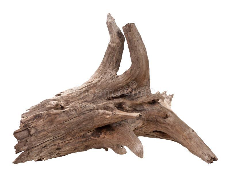 Driftwood velho isolado no branco foto de stock royalty free