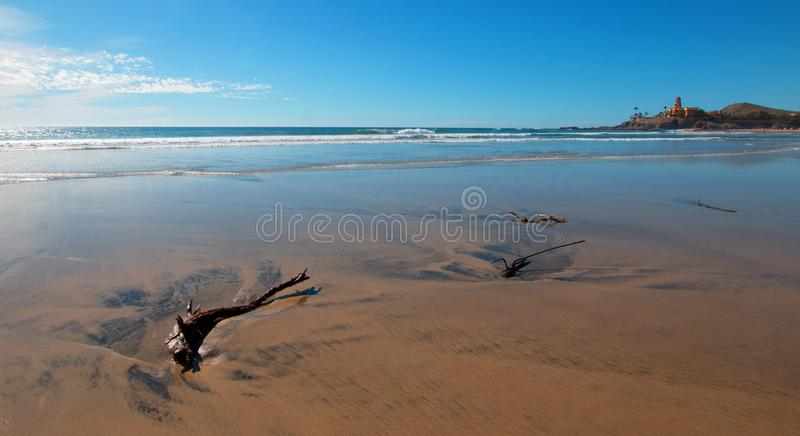 Driftwood in the water at Cerritos Beach surf spot in Baja California in Mexico royalty free stock photography