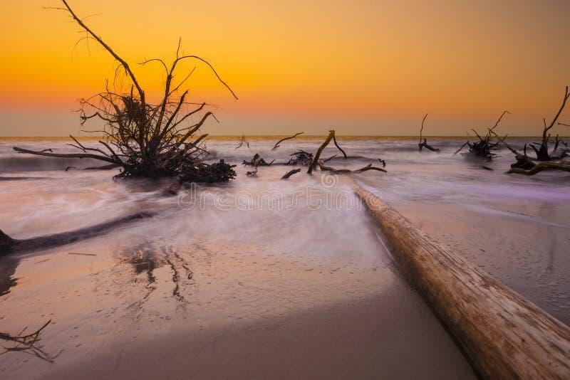Drijfhout in de oceaan, lange blootstelling royalty-vrije stock afbeeldingen