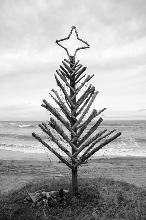 Drijfhoutkerstboom, Pouaua-Strand, Gisborne, Nieuw Zeeland royalty-vrije stock afbeeldingen