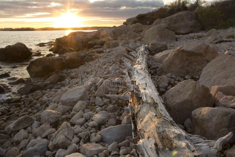 Drijfhoutlogboek, zonsondergang en keien op het strand in Connecticut royalty-vrije stock fotografie