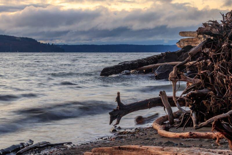 Drijfhoutstrand en oceaan bij zonsondergang royalty-vrije stock afbeeldingen
