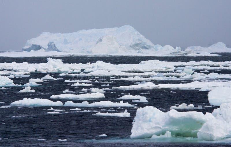 Drijfijs Antartide, ghiaccio galleggiante Antartide fotografia stock