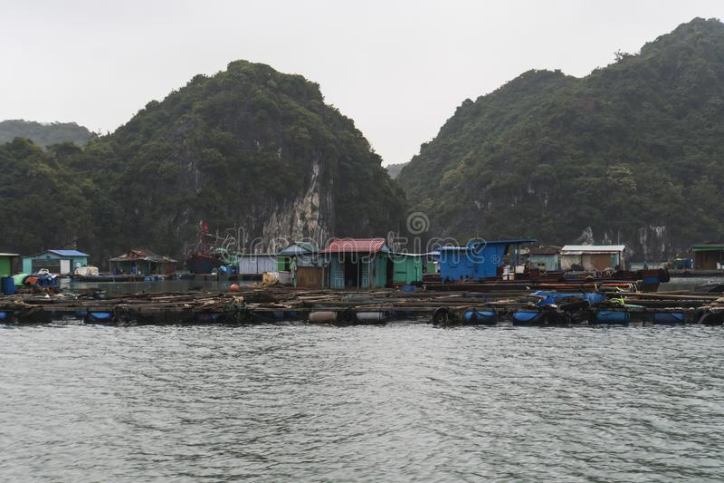 Drijvend dorp van Kuah Bleek in Halong-baai in Vietnam Huizen op het water Rotsachtige kust stock fotografie