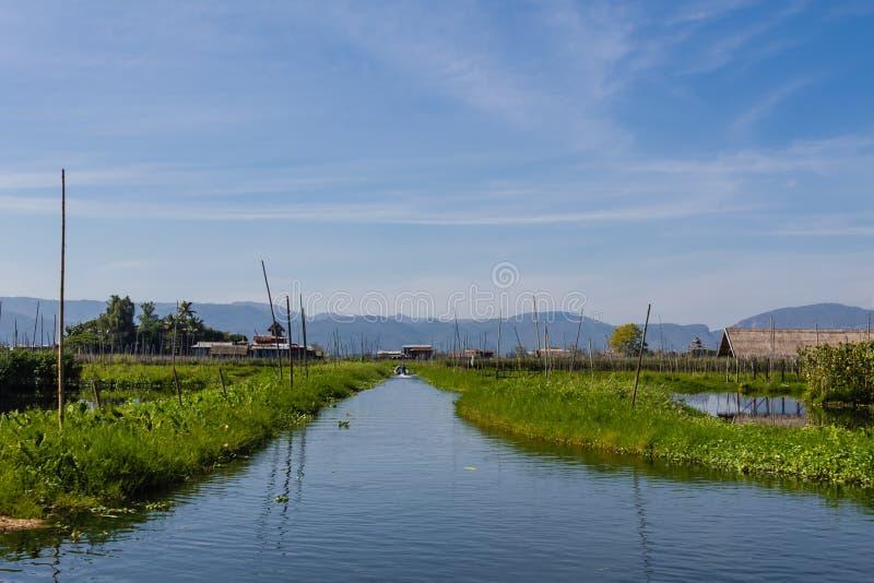 Drijvend Landbouwbedrijf, inle meer in Myanmar (Burmar) stock afbeeldingen