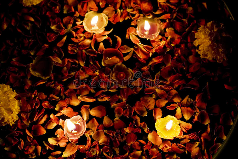 Drijvende Kaarsen in Rozewater met goudsbloem royalty-vrije stock afbeeldingen