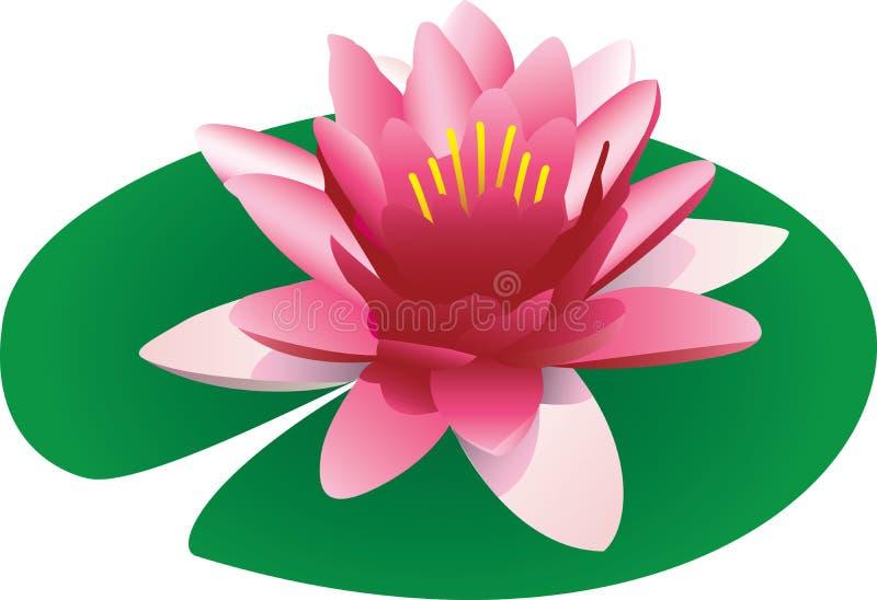 Drijvende lotusbloem stock illustratie