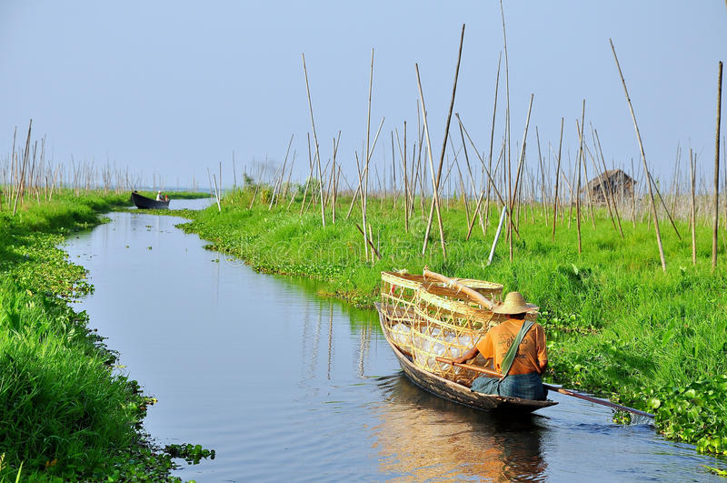 Drijvende tuin in Myanmar stock foto's