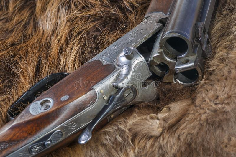Drilling - Combination Hunting Gun. A combination gun of one rifle barrel and two shotgun barrels is displayed on beaver pelts royalty free stock photos