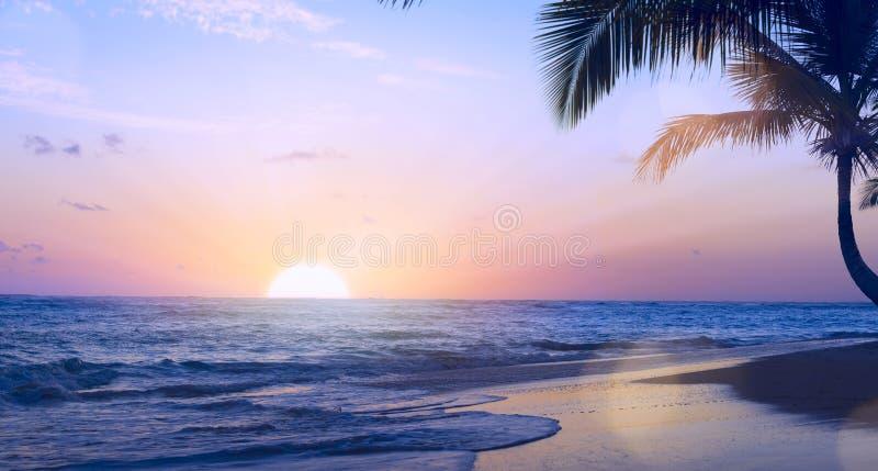 Drims för semester för konstsommar tropiska; Härlig solnedgång över tren arkivbilder