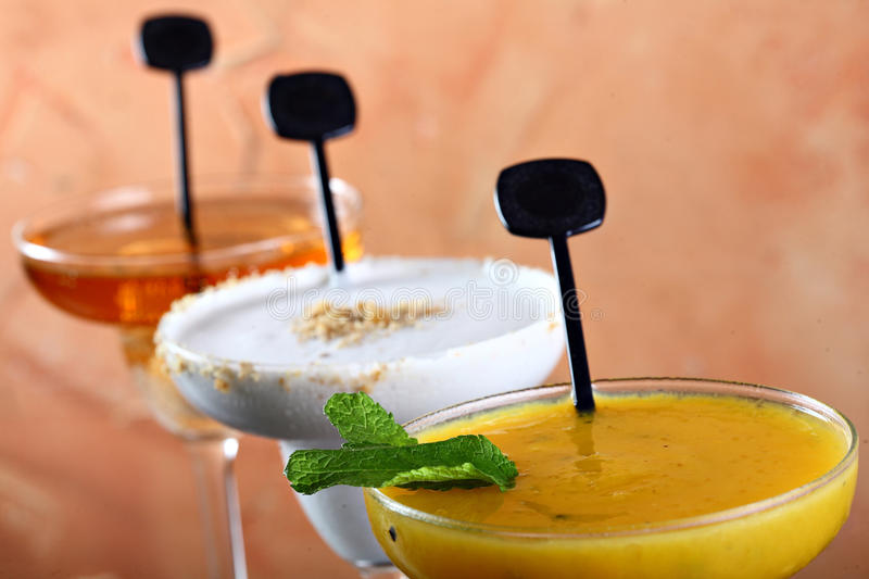 Download Drink stock image. Image of drink, fish, liquor, diving - 28308407