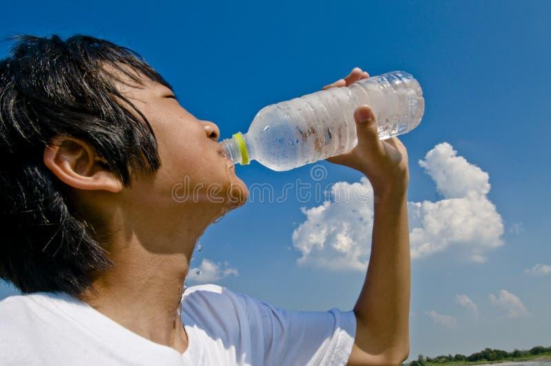 Drink stock photos