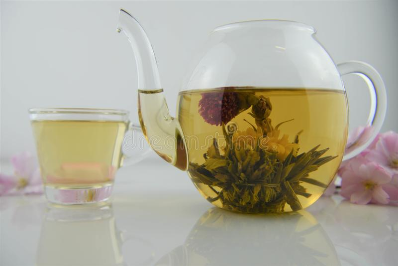 Drink of flowering tea in glass teapot with poured cup in background. A hot drink made in a glass teapot with an edible flower ball that has bloomed into yellow royalty free stock image