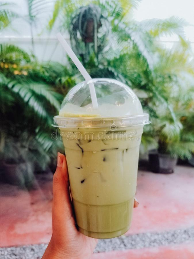 Ice matcha latte. Drink ice matcha latte in the garden royalty free stock photography