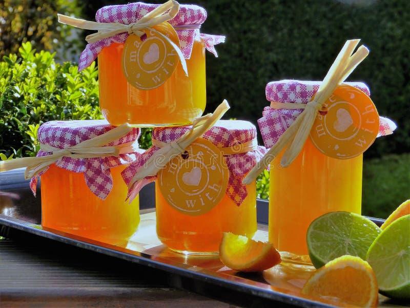 Drink, Juice, Orange Drink, Punch stock photo