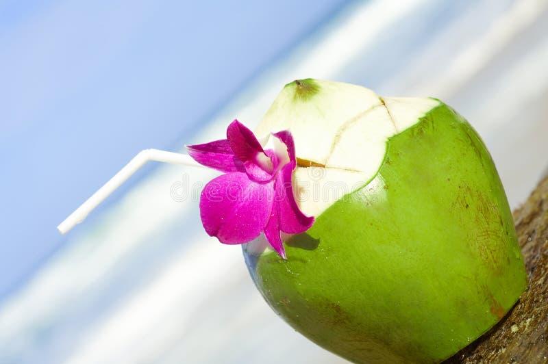 drink kokosowy zdjęcia stock