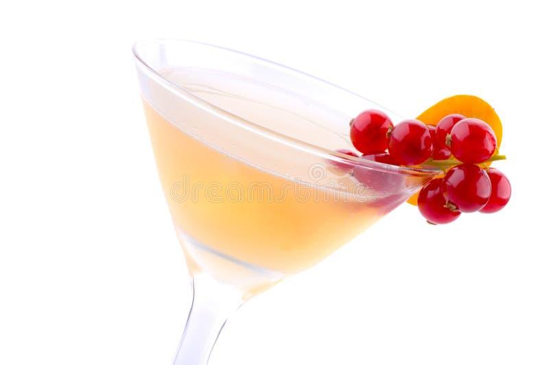 drink koktajlowym. zdjęcia royalty free