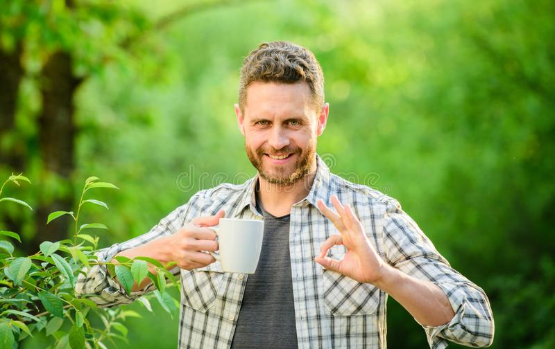 Drink tea outdoor. happy man with cup of tea. ecological life for man. man in green forest. morning coffee. healthy royalty free stock photography