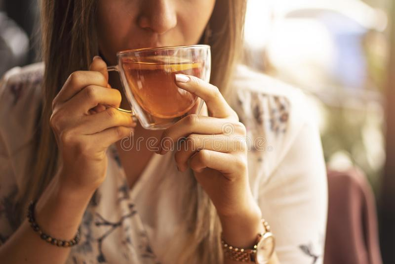 Drink Tea relax cosy photo with blurred background. Female hands holding mug of hot Tea in morning. Young woman relaxing tea cup royalty free stock image
