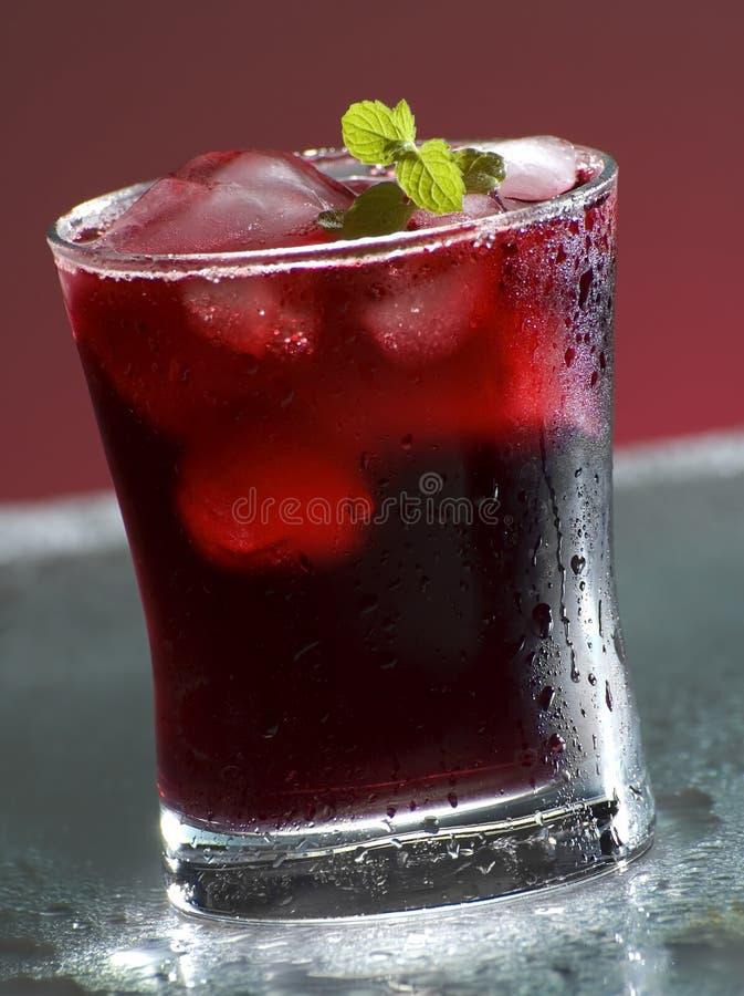 drinka zdjęcie stock