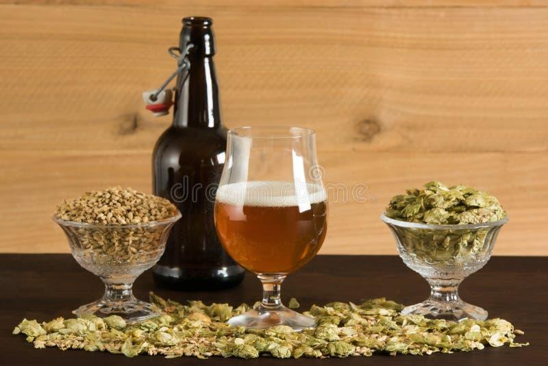Drinkbeker bier, kleine ijsschots, mout en hop royalty-vrije stock foto's
