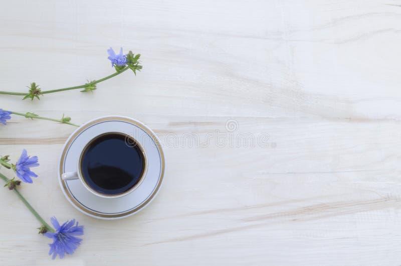 Drinkcikoria i en vit kopp och blåa blommor av en cikoriaväxt på en vit träbakgrund St?rka morgondrinken fotografering för bildbyråer