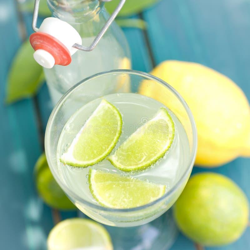 drinken bär fruktt den slappa citronen royaltyfria bilder