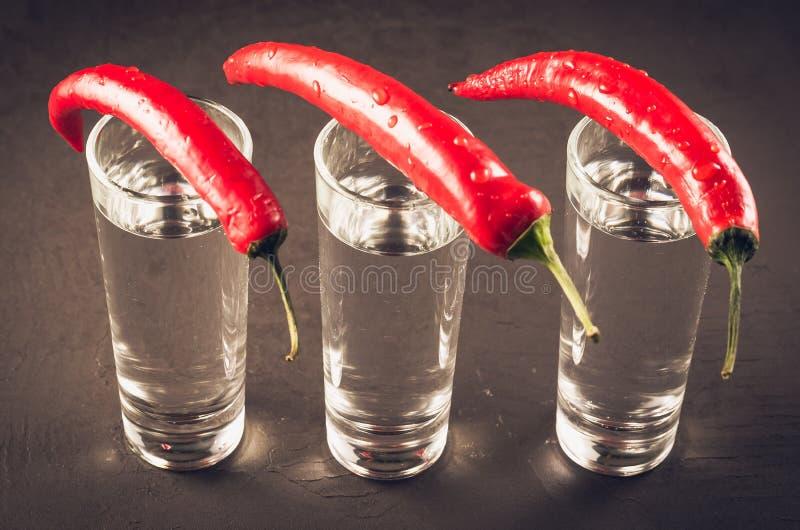 Drinken ställde in med skott av vodka, och röd peppar/drinken ställde in med skott av vodka och röd peppar på en mörk bakgrund arkivfoto