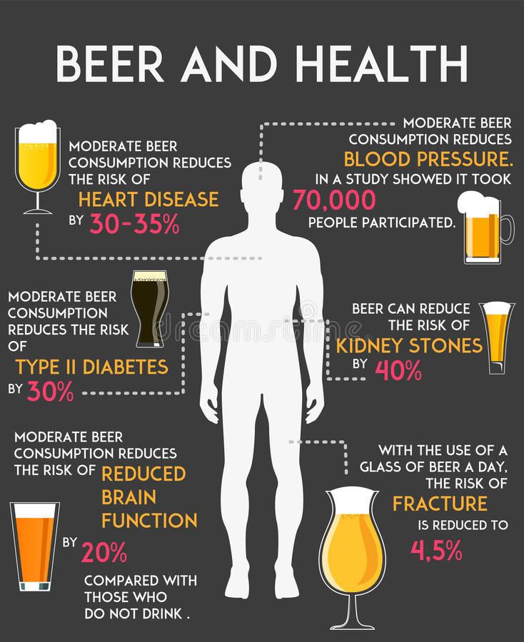 Drinking alcohol influence your body and health infographics vector illustration. Beer consumption concept poster vector illustration
