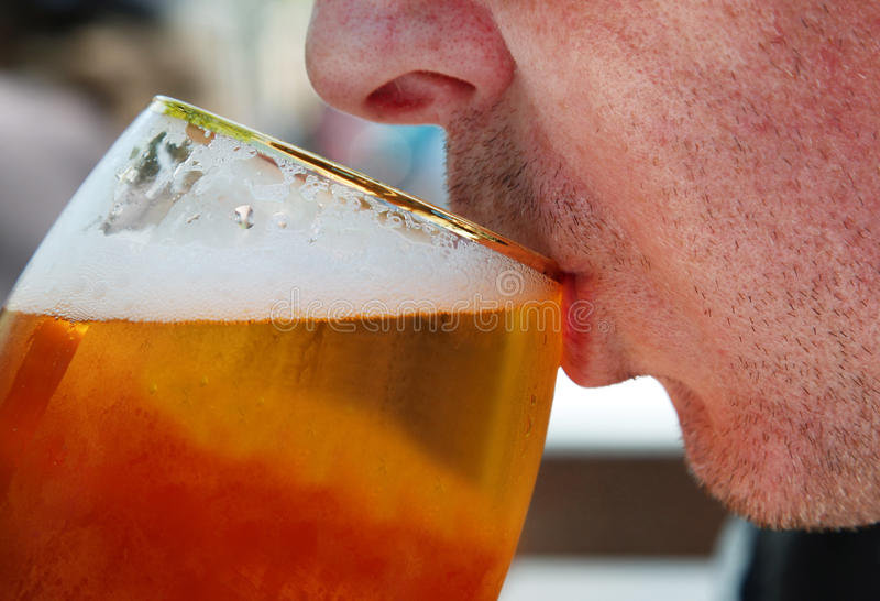 Man Drinking Beer. Man drinking a pint of beer royalty free stock photography